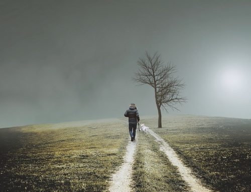 散步靜心 法:有效澄清內心雜思
