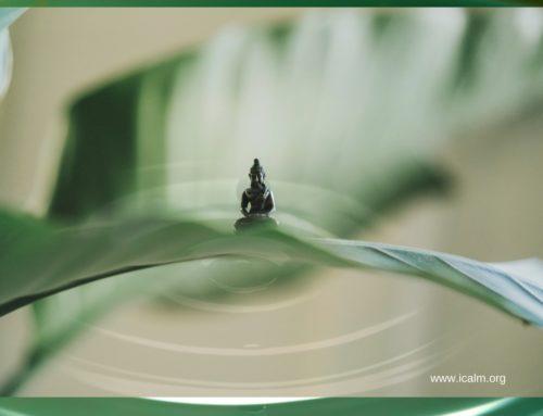 探訪能量漩渦─台北.東京隨筆記錄